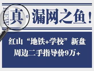 """实探红山""""地铁+学校""""新盘,周边二手9万+"""