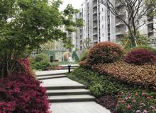 为美好而来,新空港孔雀城建设绿色环保生态高地 致敬城市奋斗者